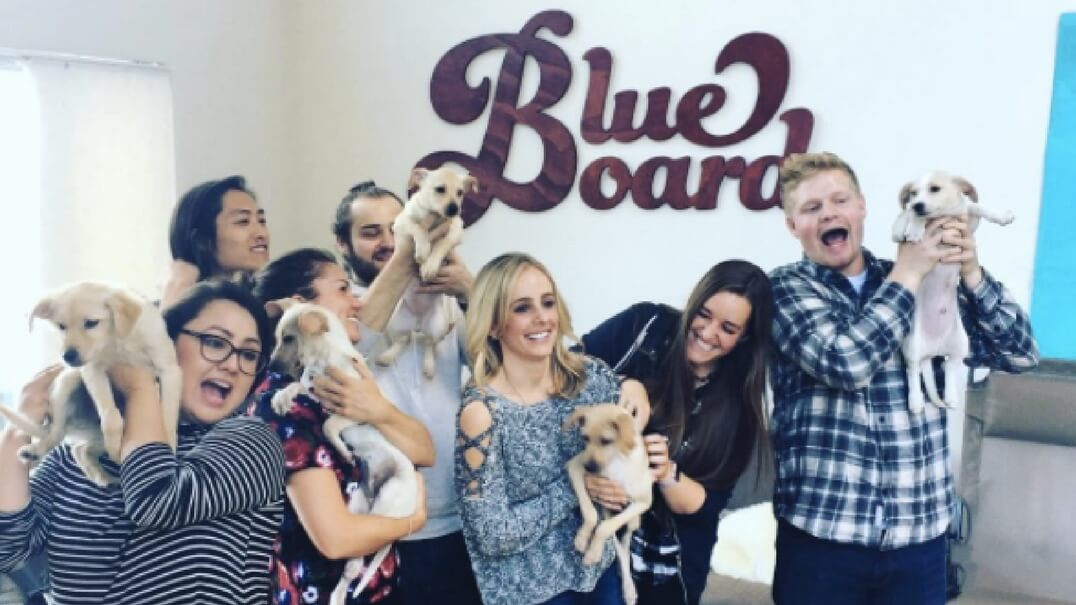 employees holding puppies.jpg